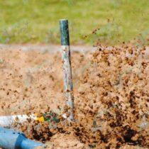 Action photo jukskei throw
